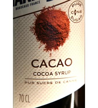Marie Brizard Cocoa Syrup